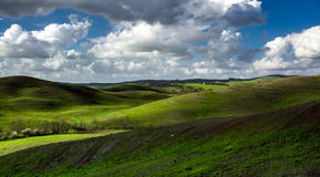 Beautiful green hills in Tuscany Stock Images