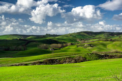 Beautiful green hills in Tuscany Royalty Free Stock Image