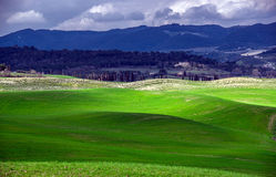 Beautiful green hills in Tuscany Royalty Free Stock Photography