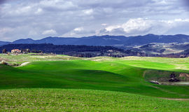 Beautiful green hills in Tuscany Stock Image