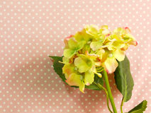 Beautiful green hydrangea of artificial flowers bouquet Stock Photo