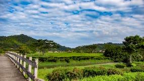 Beautiful Fairway At La Iguana Golf Course, Herradura, Costa Rica stock photo