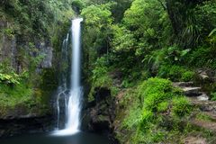 Beautiful Green Kaiate Falls stock images