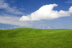 Beautiful green landscape Stock Photography