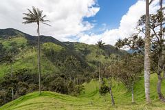 Landscape in Quindio, Colombia Stock Photography