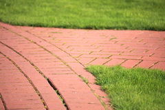 Beautiful green lawns perfectly cut background Stock Photography
