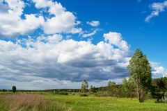 Beautiful green meadow near the forest under the blue cloudy sky during sunny day. In Ukraine Royalty Free Stock Photos