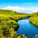 Beautiful green meadow with a stream near the village of Doolin royalty free stock images