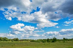 Beautiful green meadow under the blue cloudy sky during sunny day Stock Photo