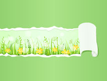 Beautiful green meadow under Ripped Paper Royalty Free Stock Images
