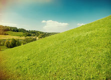 Beautiful Green Meadow Royalty Free Stock Photo