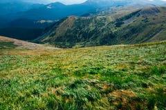 Beautiful green mountain landscape Stock Photos