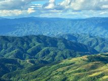 Beautiful green mountain scenic at Doi Chang Moob, Chiang Rai, T Stock Photography