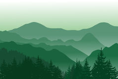Beautiful green mountains. Summer landscape. Mountains summer background with trees on the front Stock Photos