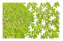 Beautiful green mowed lawn in puzzle shape on white background Royalty Free Stock Image