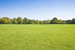 Beautiful green mowed lawn with trees and sky on background - image with copy space.  royalty free stock photo
