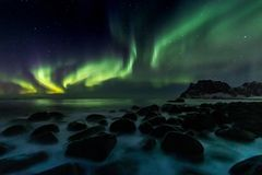 Northern Lights at Utakleiv Beach on the Lofoten Islands royalty free stock image