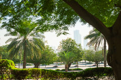 Beautiful green park in the city of Dubai, United Arab Emirates Royalty Free Stock Photography