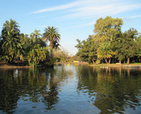 Beautiful green park with the lake. Landscape in Buenos Aires. Royalty Free Stock Image