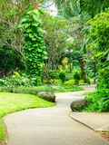 Beautiful Green Park with Winding Path Stock Images