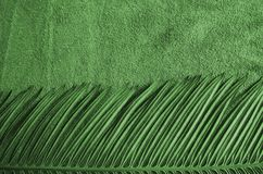 Beautiful green pattern of cycad leaf and towel. Details of beautiful green pattern of cycad leaf and towel texture Royalty Free Stock Photos