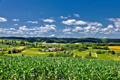 Beautiful green scenery landscape in spring time II royalty free stock photo