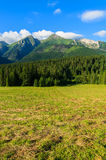 Beautiful green summer landscape of Tatra Mountains in Zdiar village, Slovakia Stock Photo
