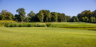 Beautiful green summer lane with pond and trees against clear blue sky. Spring and summer park landscape. Golf field with lake. Beautiful green summer lane with royalty free stock photos