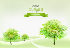 Beautiful green summer nature background. Royalty Free Stock Image