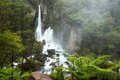 Beautiful Green Tarawera Falls stock images