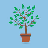Beautiful Green tree over blur background. Vector Stock Photography