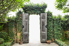 Beautiful green tree wall & door. Royalty Free Stock Photo