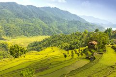 Beautiful green valley and single rock house on a hill stock image