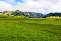 Beautiful green valley in summer day in Caucasus mountains. Georgia, Tusheti