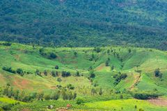 Beautiful Green View of the Hill, Mountain, Phu Luang. Loei province, Thailand Stock Images