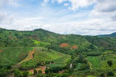 Beautiful Green View of the Hill, Mountain, Phu Luang. Loei province, Thailand Stock Photography