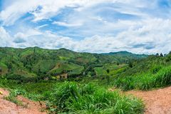 Beautiful Green View of the Hill, Mountain, Phu Luang, Loei province. Thailand Stock Images