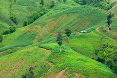 Beautiful Green View of the Hill, Mountain, Phu Luang. Loei province, Thailand Stock Photo