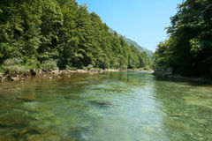 Beautiful green  water of river Neretva Stock Images