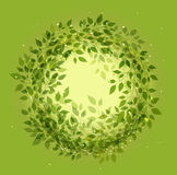 Beautiful green wreath Royalty Free Stock Photos