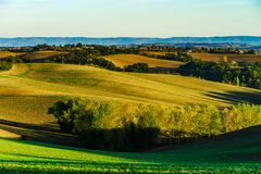 Beautiful green and yellow hills on sunset, french Tuscany Stock Images
