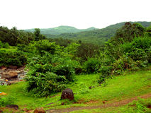 A beautiful greenery in a rural India Royalty Free Stock Photos