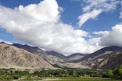 Beautiful greens and mountaineous landscape, Ladakh Stock Image