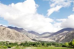 Beautiful greens and mountaineous landscape, Ladakh Stock Photography