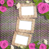 Beautiful greeting card with bouquet of pink roses, ribbons Royalty Free Stock Images
