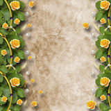 Beautiful greeting card with bouquet of yellow roses Royalty Free Stock Image