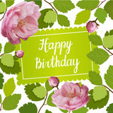 Beautiful greeting card on happy birthday with spring roses and lettering. Beautiful greeting card with a frame of spring roses flowers and lettering. Vector Royalty Free Stock Photos