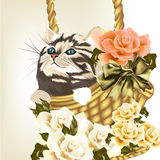 Beautiful greeting card with little cute striped cat sit in bask. Cute valentine greeting card with little kitty and roses stock illustration