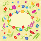 Beautiful greeting card with spring flowers Stock Image