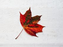 Beautiful greeting card on Veterans Day. Top view. Beautiful greeting card on Veterans Day. Top view, close-up, isolated background stock photography